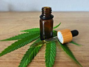Kto wystawia receptę na marihuanę medyczną?